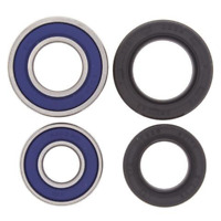 Wheel Bearing and Seal Kit For 1989 Suzuki LT500R QuadRacer~All Balls 25-1042