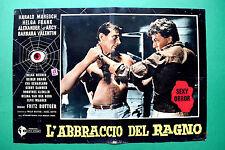 T11 FOTOBUSTA L'ABBRACCIO DEL RAGNO FRITZ BOTTGER HARALD MARESCH HELGA FRANK 3