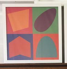 Geometric Print 55x55cm Professionally Framed Ready To Hang