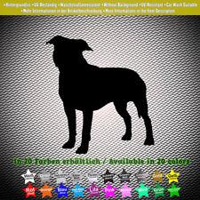 American Staffordshire Terrier Sticker Aufkleber Silhouette Hund Dog 8cm x 9cm