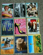 Lot 9 NEW Avanti Birthday Thank You Funny Animal Greeting Cards & Envelopes