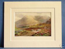 PASS OF DELPHI KILLARY BAY CONNAUGHT IRELAND VERY RARE VINTAGE 10X8 PRINT c1920