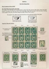 BOLIVIA STAMPS 1867 5c CONDOR 3rd PLATE VARIETIES, SUPERB PAGE INC BLOCK x 12