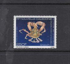 NEW CALEDONIA: 1993 250f Deep Sea Life SG 978, MUH.