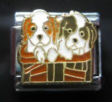 King Charles Spaniel Dogs in Basket Italian Charm fits classic 9mm Bracelets
