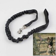 PP Metal Dog Rope High Graded Quality Stretchable Harness Collar New Puppy Leash