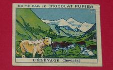 CHROMO PUPIER 1930 ALBUM JOLIES IMAGES SERIE 4 TRAVAUX CAMPAGNE ELEVAGE BOVIDES
