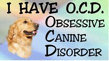 GOLDEN RETRIEVER - OBSESSIVE CANINE DISORDER Dog Car Sticker By Starprint