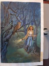 Originalzeichnung Firuz Askin Mitternachts-Roman 585 Titelbild  Totenvogel ruft