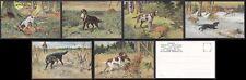 CACCIA 94 HUNTING CANI DOG VOLPE FOX - SERIE di 6 Cartoline primi '900