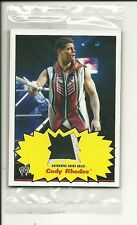 Cody Rhodes 2012 Topps Heritage WWE 2 Color Shirt Relic Card