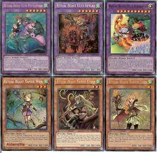 Yugioh Ritual Beast Deck - Ulti-Gaiapelio Ulti-Apelio Tamer Elder Lara Wen