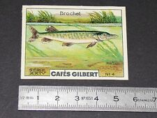 CHROMO 1936 CAFES GILBERT POISSONS RIVIERE FISH FISCH FISCHE BROCHET  POISSON