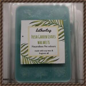 All Natural Non Toxic Garden Leaves Wax Melts Tarts