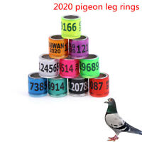 2020 20x 8mm pigeon leg foriegn rings identify bands pigeon training supplies_FR