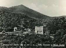 SORIANO NEL CIMINO - Villa Capaccini e Monte Cimino - 1955