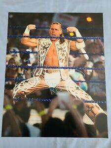 Shawn Michaels Autographed 16 X 20 Photo, No COA