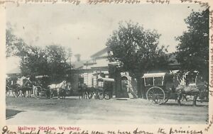 Horses Carriages Railway Station Wynberg Cape Town Western Cape South Africa
