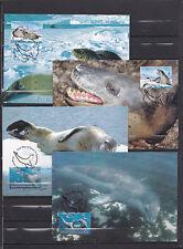Antartic WWF 2001 - Maxicards - Vissen/Fish/Fische  -> WWF