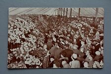R&L Postcard: 1954 The Great Marquee, Southport Flower Show