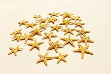 """12 Tiny Mini Starfish Tan Flat Natural (13-25mm) 1/2 - 1"""" Beach Crafts Decor."""