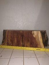 Unique Eastern Red Cedar Wood Slab /Live Edge Taxidermy Lumber /Rustic/Decor/Art