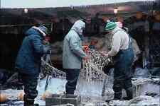 690096 Repairing Fish Nets Deep Sea Trawler Newfoundland Canada A4 Photo Print