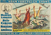 Circus, Clown, Side Shows, Posters, vintage photo reproduction High quality, 114