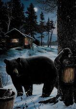 Winter Black Bear Family Cabin Snow Nite Scene Lg House Custom Decor