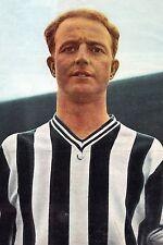 Football Photo>IVOR ALLCHURCH Newcastle United 1961-62