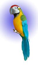 Papagei am Clip Türkis aus Federn 15 cm