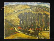 Ancienne Huile sur toile signée SCHMITT Paysage de montagne