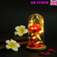Beauty and the Beast Inspired Light UP enchanted Rose in Glass Dome Decor Gift