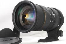 [NEAR MINT] Sigma EX 50-500mm f/4-6.3 APO HSM DG EX OS AF Lens For canon (L330)