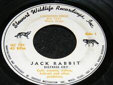 1962 7 inch 45 Rpm Oddball Jack Rabbit Distress Cry Stewart Wildlife Waco Texas