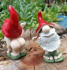 Handmade Mini Gnome Butt Naked with Fig Leaf for Fairy Garden