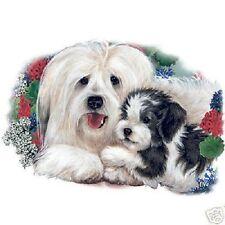 Havanese Mom & Pup Dog Tshirt Sizes/Colors