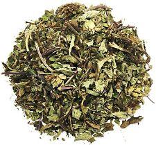 Salvia Sage Herbal Infusion Tea zip-lock bag (25 grams) 100% Natural