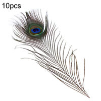 KE_ FT- 10Pcs Peacock Feathers Plumes Wedding Home Party Decor Craft Accessori