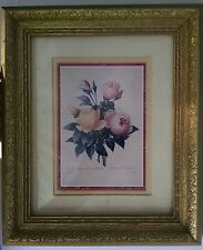 FRAMED PICTURE OF PINK ROSES