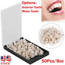 50PCS Dental Teeth Temporary Oral Care Resin Crown Anterior/Molar Teeth US New