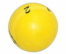 Gray Nicolls Cricket Balls