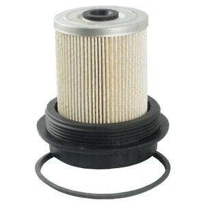 Fuel Filter Ecogard XF55055