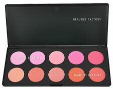 Value 10 Color Professional Cheek Blush Makeup Palette (9 Matte + 1 Shimmer) 613
