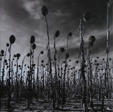 Dead Can Dance - Anastasis 2 x LP - SEALED Limited 180 Gram Vinyl Album Record