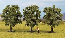 árboles de Noch N, Z (25510): 3 árboles de frutas, Verde