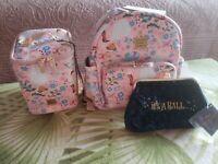 Petunia Pickle Bottom Disney Cinderella District Backpack + Matching Long Case
