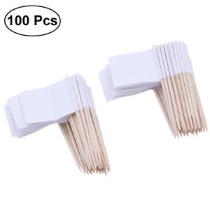 100x Blank Toothpick Flag Topper MINI Cocktail Cupcake Stick Decor Party Supply