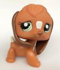 LPS Littlest Pet Shop Brown & White Beagle Puppy Dog Green Eyes Toy X
