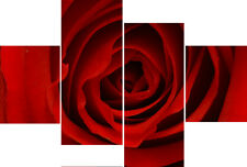 Blood Red Rose Flower 4 Panel Multi Set Canvas Pictures Floral Wall Art Prints
